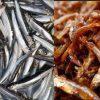cá cơm sấy giòn