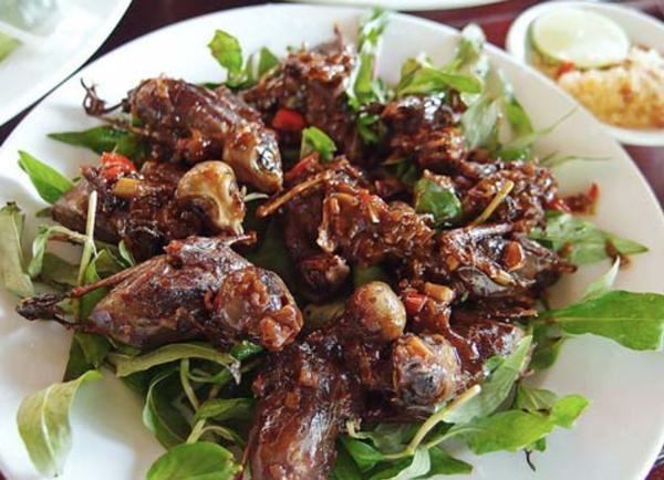 Chim mía đặc sản của Quảng Ngãi